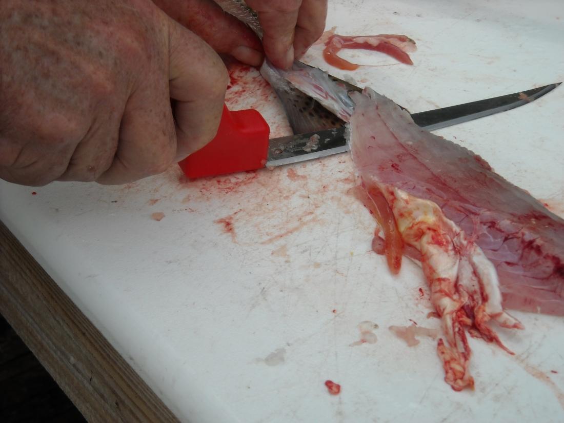 CFknife